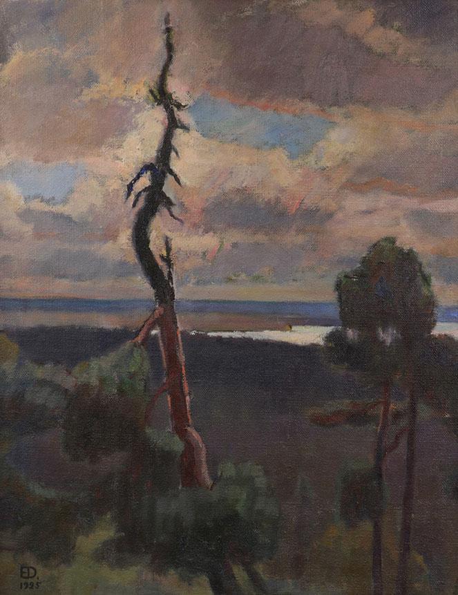 Galleria-Akseli-Emil-Danielson-Maisema-Pirunvuorelta-1925